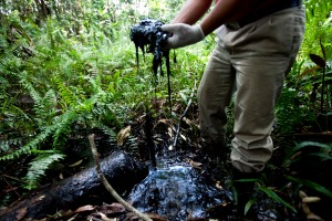 Toxic wastes from Texaco-Chevron are poisoning people and animals alike in Ecuador