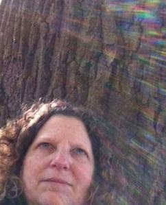 JBH rainbow tree