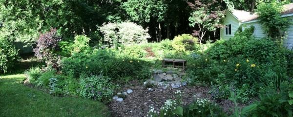 My peaceful backyard in the Shire